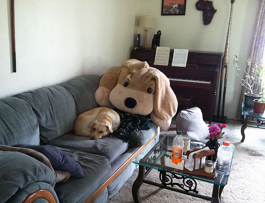 Blonde dog chilling on couch overlooked by giant stuffed dog