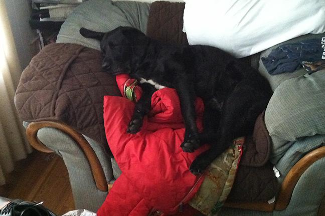 Maggie on sleeping bags