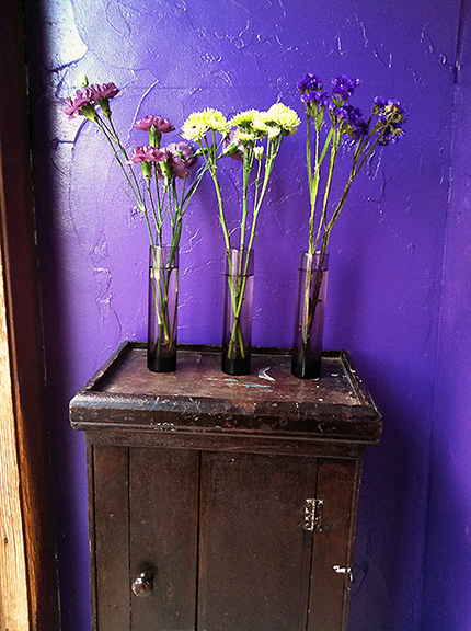 Three purple vases with flowers against a purple wall
